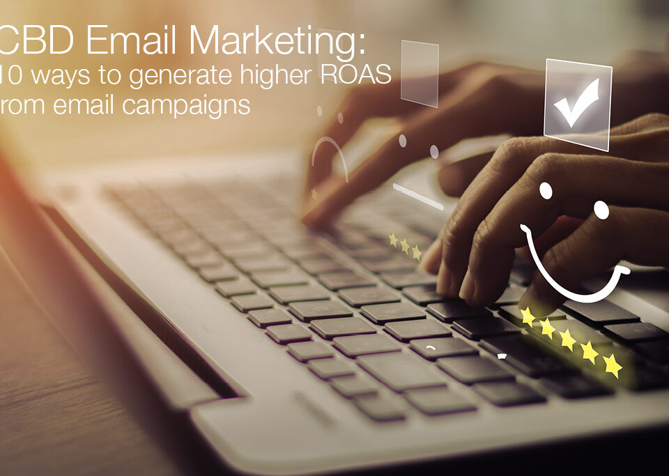 cbd email marketing blog