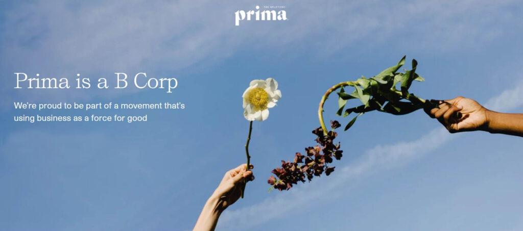prima b corporation